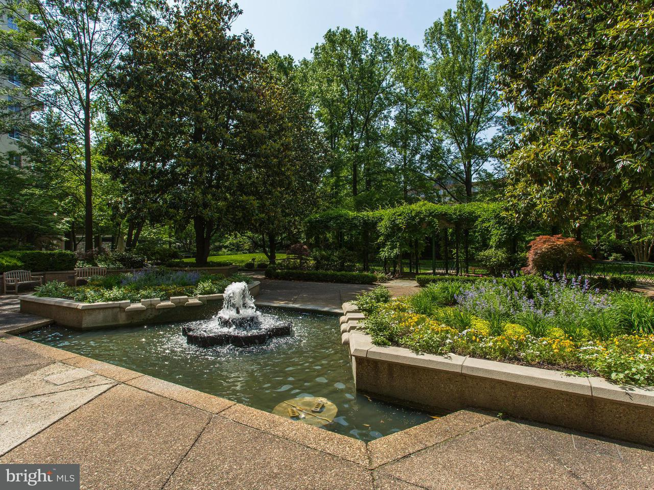Additional photo for property listing at 2801 New Mexico Ave NW #715  Washington, District Of Columbia 20007 United States