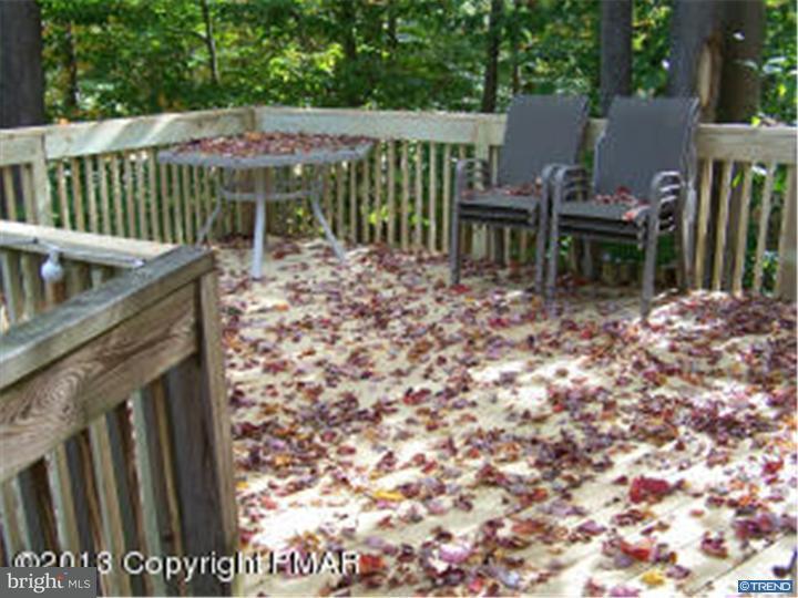 Additional photo for property listing at 57 MINISINK Drive  Pocono Lake, Pennsylvania 18347 United States