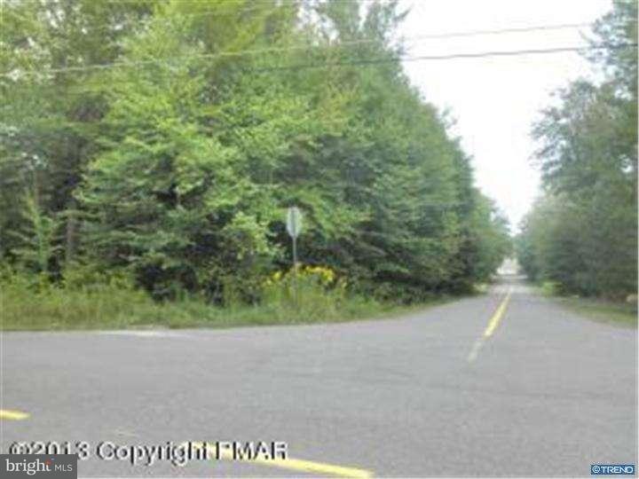 Additional photo for property listing at 501 ROBERT DAVID Drive  Tobyhanna, Пенсильвания 18466 Соединенные Штаты