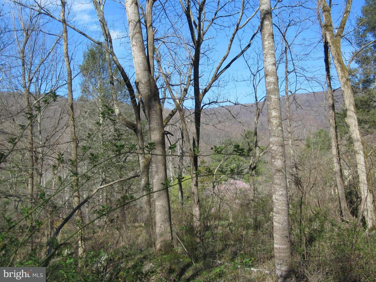Land for Sale at Weakley Hollow Rd Syria, Virginia 22743 United States