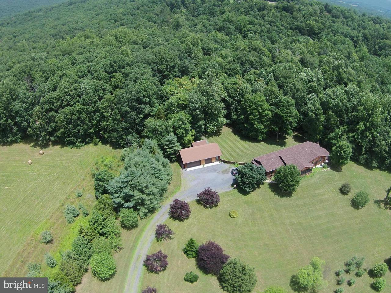 Farm for Sale at 3290 BOLIVER Road 3290 BOLIVER Road Fort Valley, Virginia 22652 United States