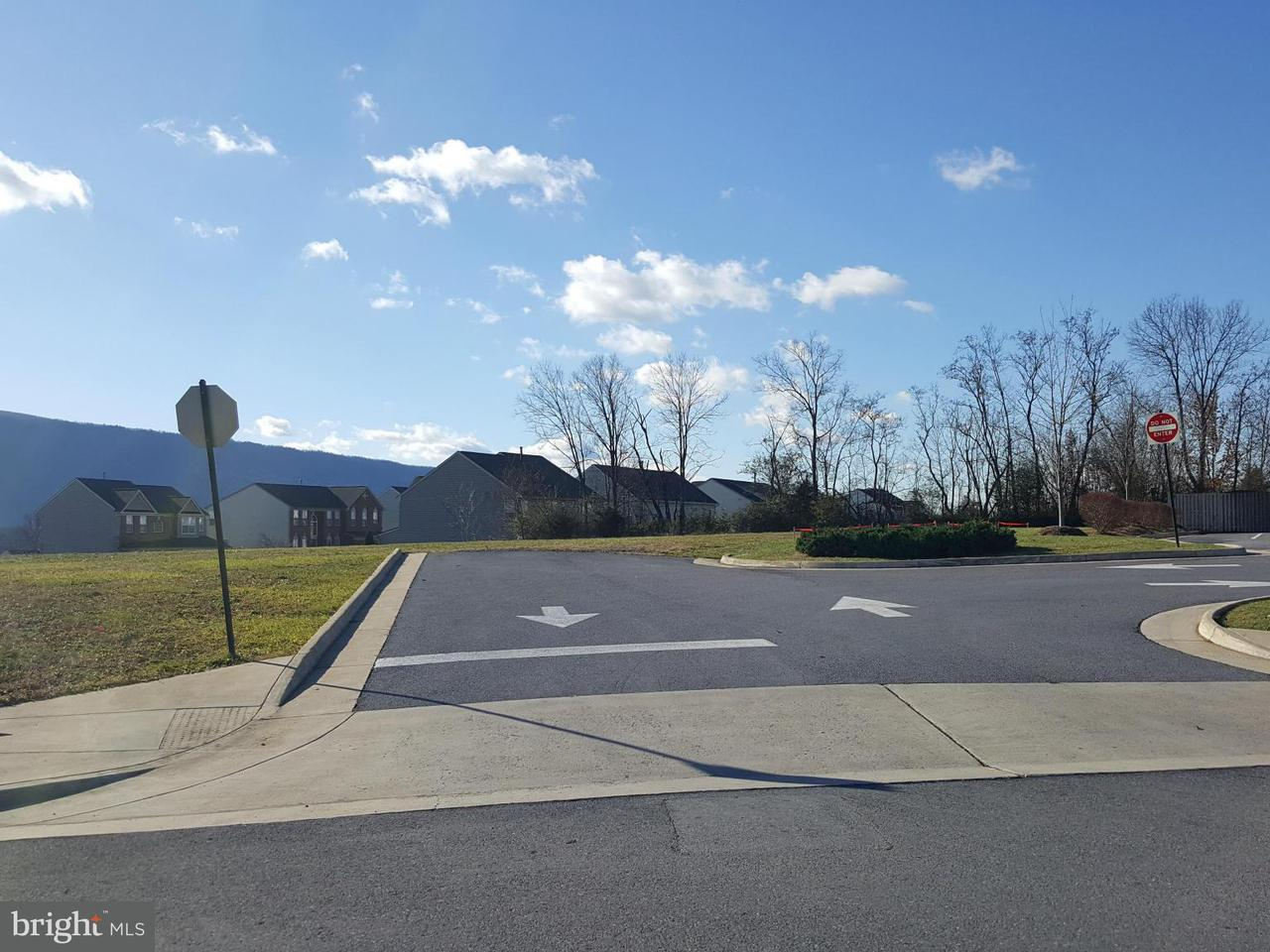Land for Sale at Ox Bow Drive Ox Bow Drive Strasburg, Virginia 22657 United States