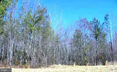 Land for Sale at Governors Point Ln Unionville, Virginia 22567 United States