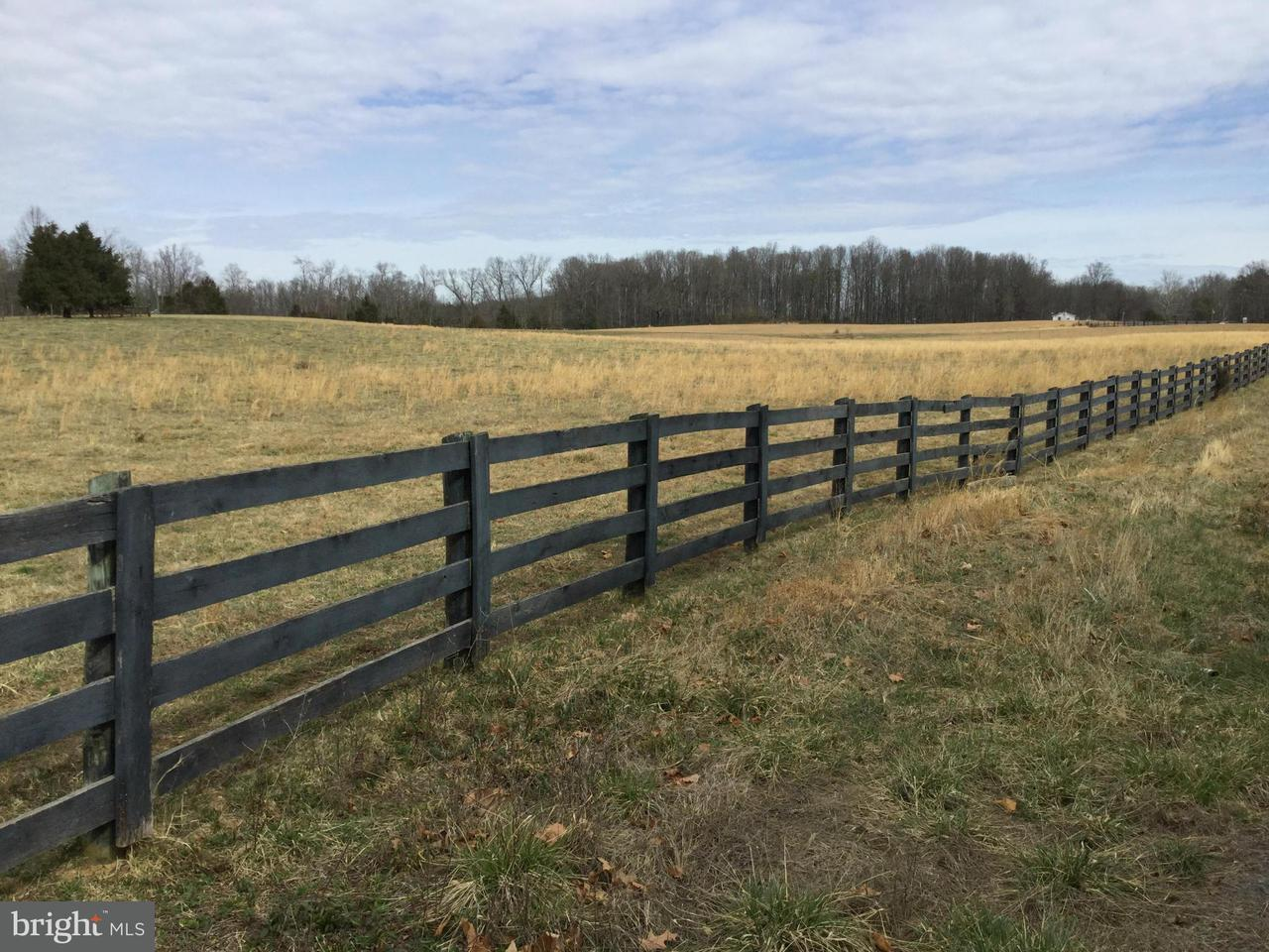 Land for Sale at RYLAND CHAPEL Road RYLAND CHAPEL Road Jeffersonton, Virginia 22724 United States