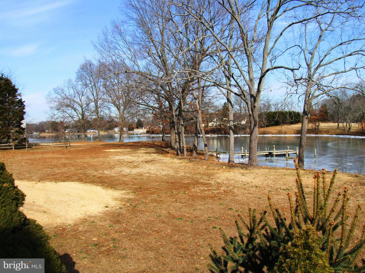 Additional photo for property listing at 8779 QUAILSAR Road 8779 QUAILSAR Road Easton, Maryland 21601 Estados Unidos