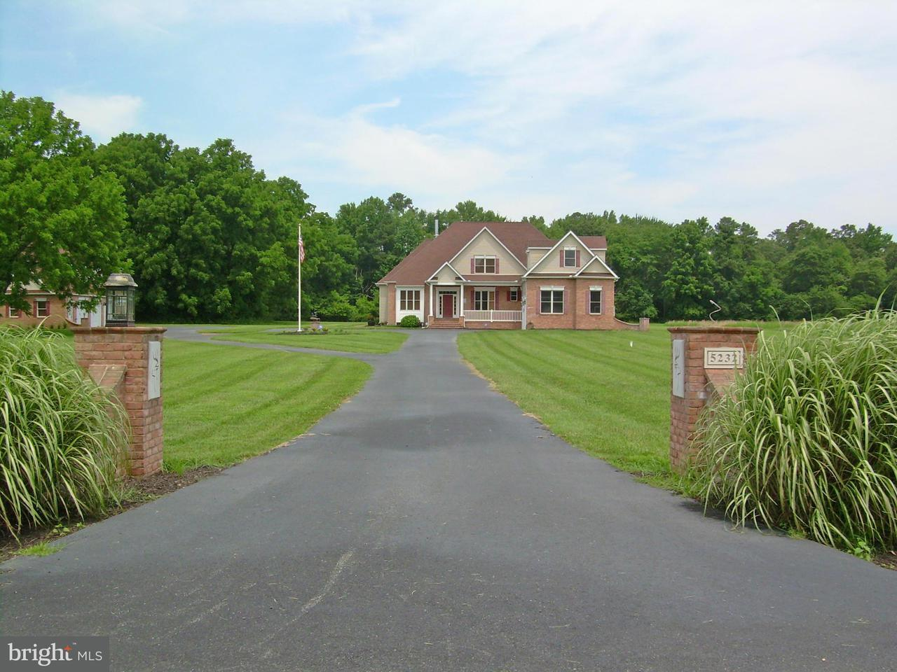Additional photo for property listing at 5232 River Road 5232 River Road Hurlock, Maryland 21643 Stati Uniti