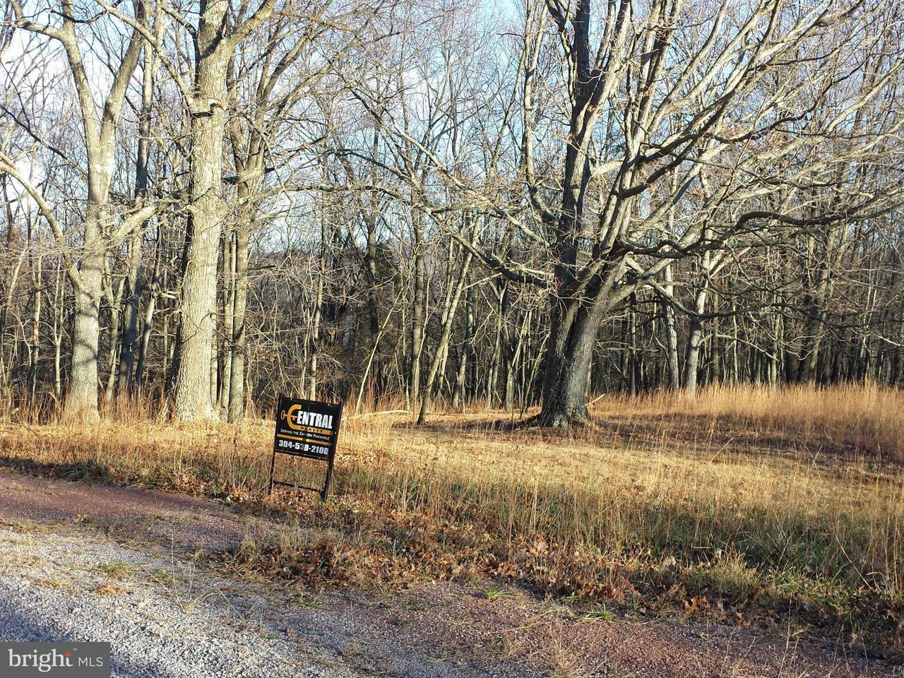 Land for Sale at North Ridge Rd Mathias, West Virginia 26812 United States