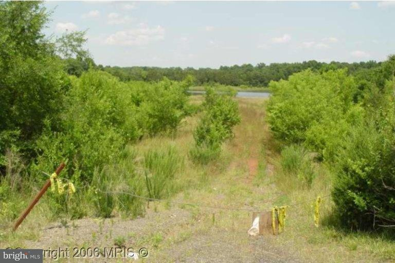 Land for Sale at NOT ON FILE NOT ON FILE Bealeton, Virginia 22712 United States