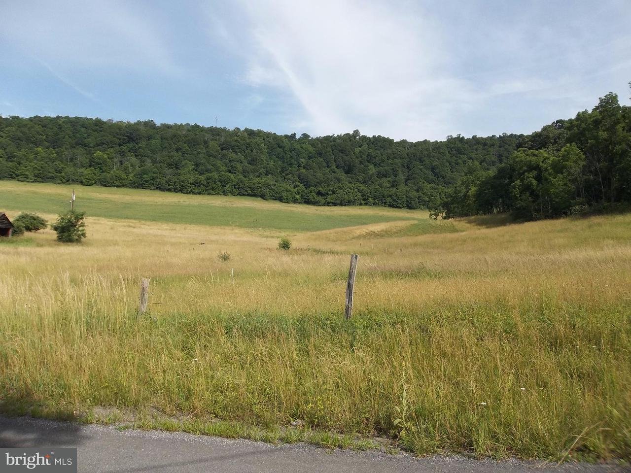Land for Sale at Oliver Beltz Rd SE Oldtown, Maryland 21555 United States