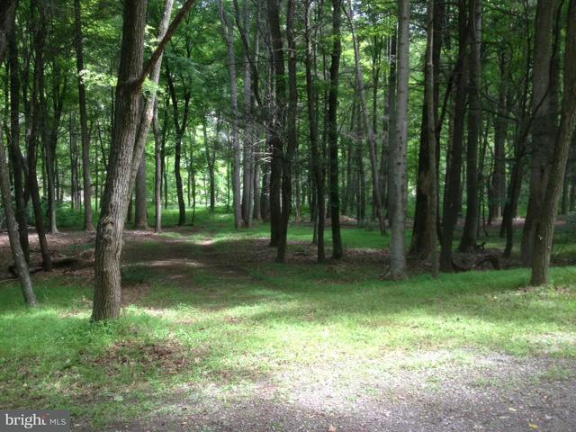 Additional photo for property listing at Amberwood  Great Cacapon, West Virginia 25422 United States