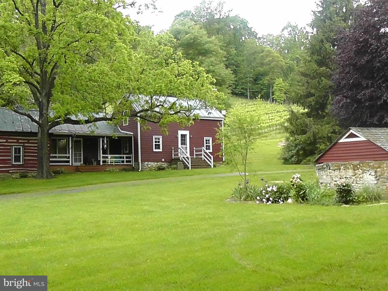 Farm for Sale at 423 BEN VENUE Road 423 BEN VENUE Road Flint Hill, Virginia 22627 United States