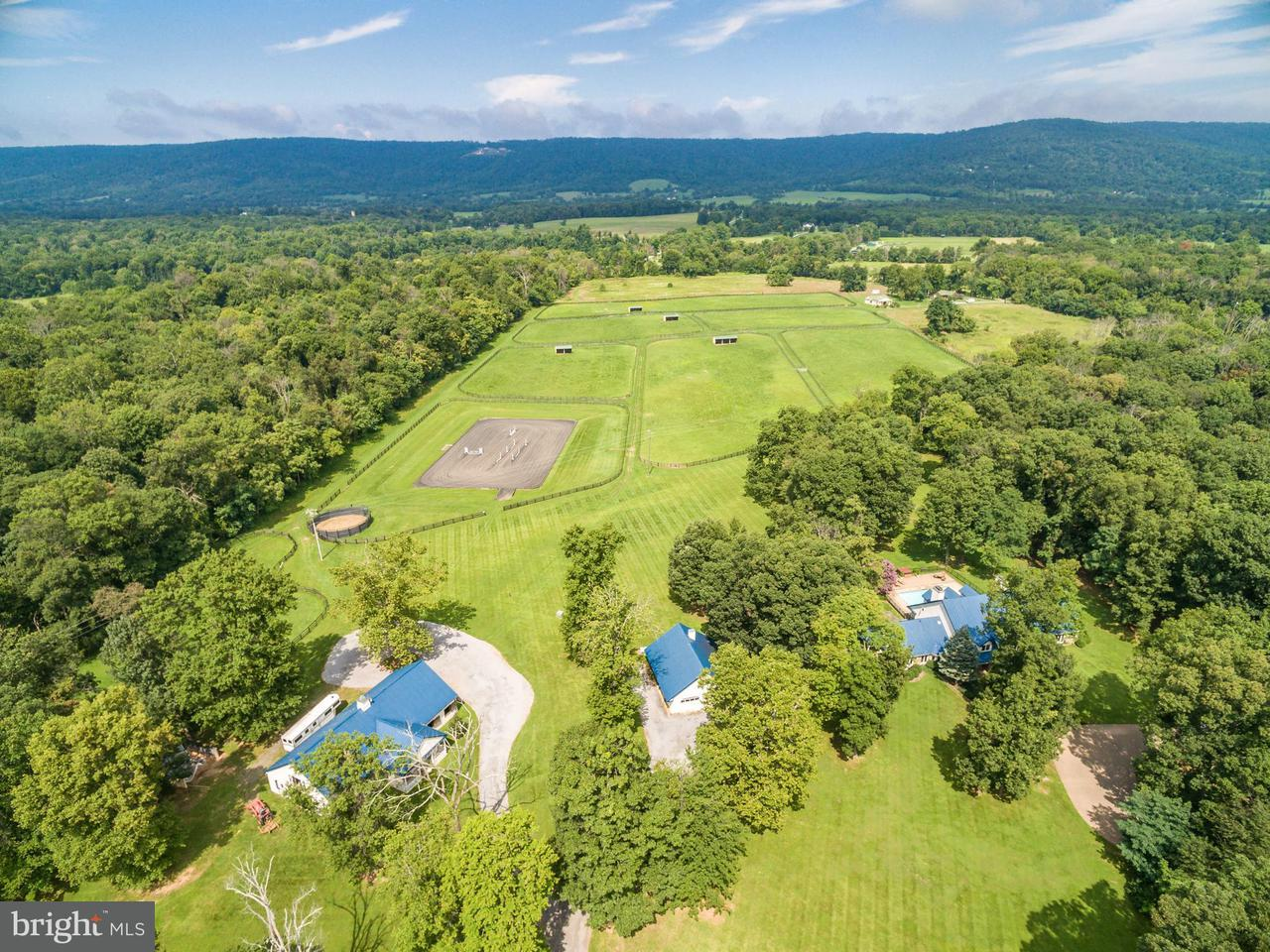Additional photo for property listing at 20022 TRAPPE Road 20022 TRAPPE Road Bluemont, Virginia 20135 Estados Unidos
