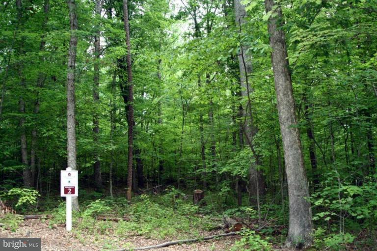 Land for Sale at Glenwood Ln Orange, Virginia 22960 United States
