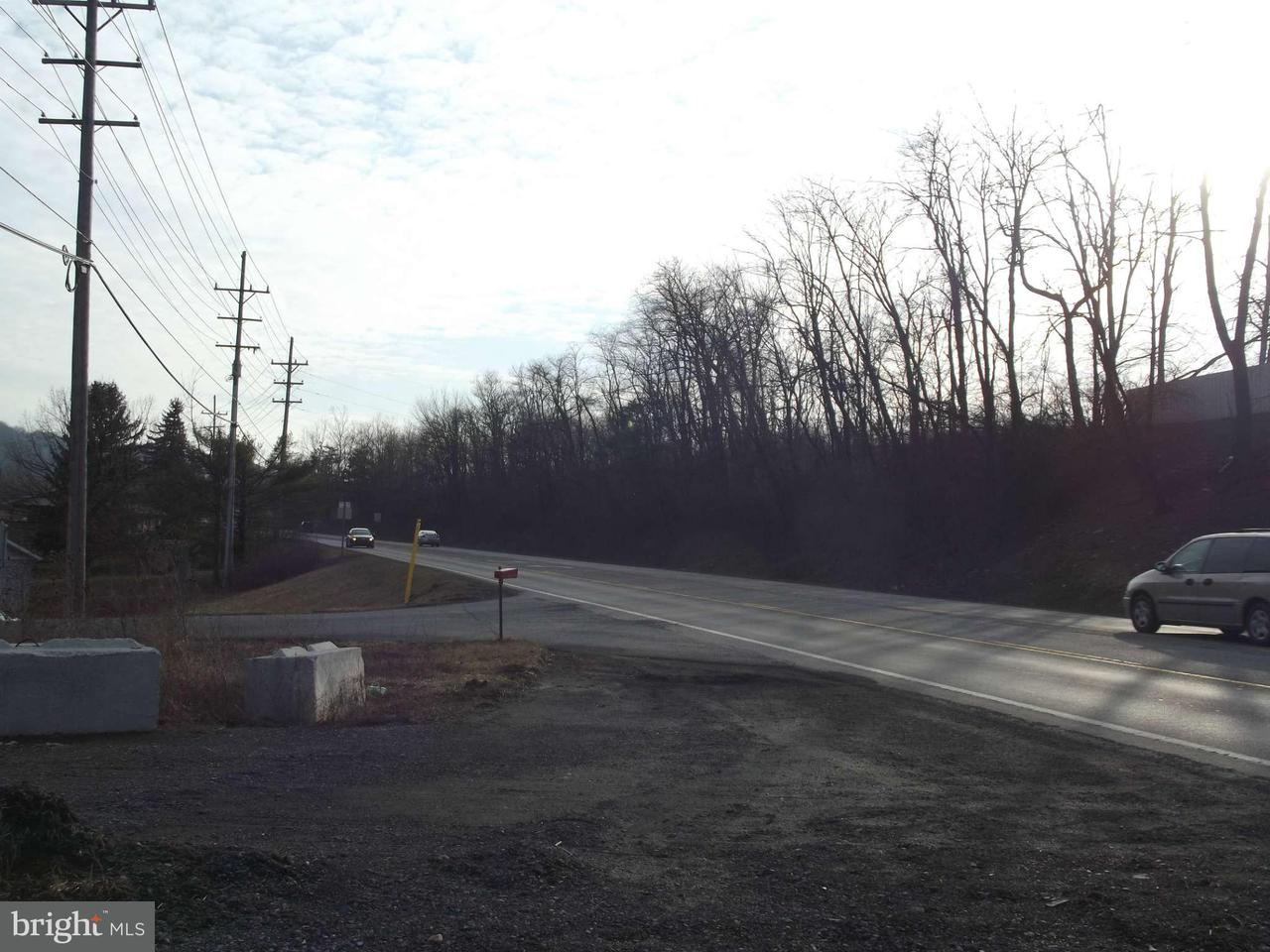 Additional photo for property listing at Us Rt. 220 Us Rt. 220 New Creek, Virginia Occidentale 26743 Stati Uniti