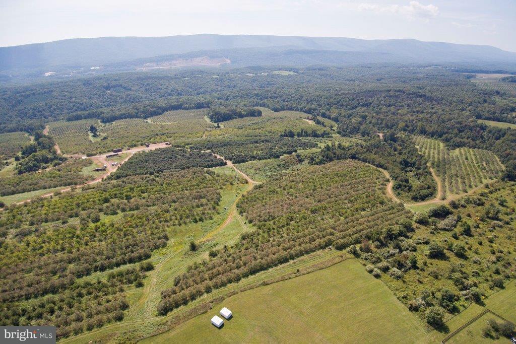 Terreno para Venda às 806 HOLLOW AND PARRISHVILLE Road 806 HOLLOW AND PARRISHVILLE Road Gore, Virginia 22637 Estados Unidos