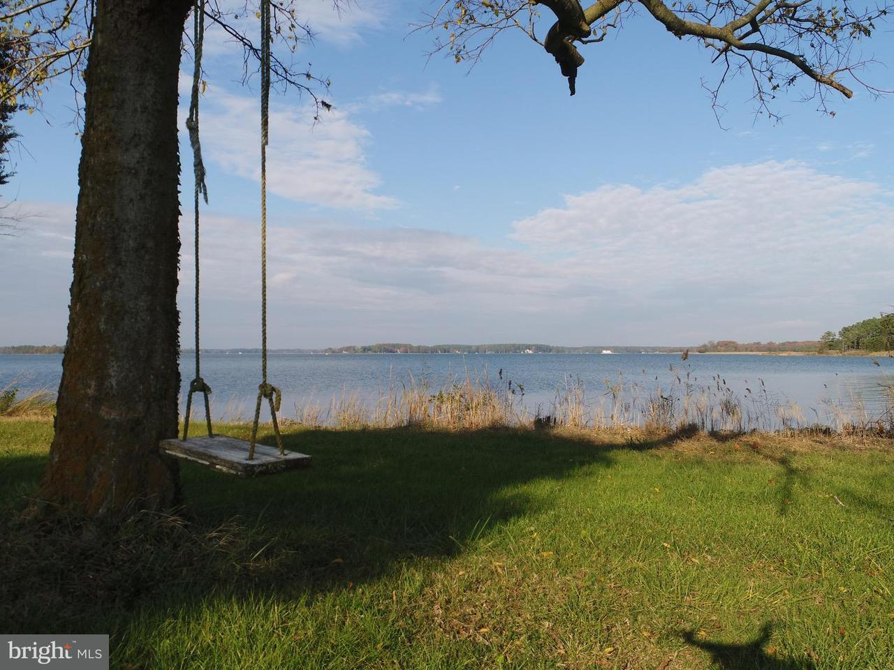Additional photo for property listing at 5252 LONG POINT FARM Drive 5252 LONG POINT FARM Drive Oxford, 马里兰州 21654 美国