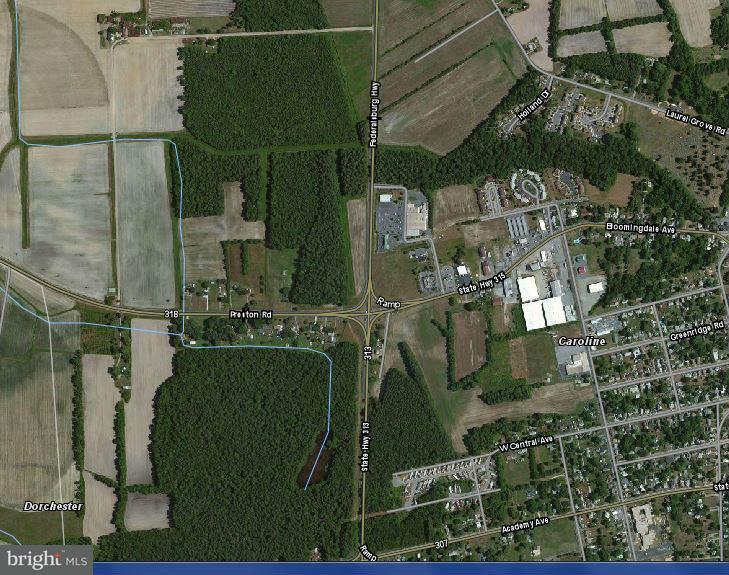 土地 のために 売買 アット BLOOMINGDALE Avenue BLOOMINGDALE Avenue Federalsburg, メリーランド 21632 アメリカ合衆国