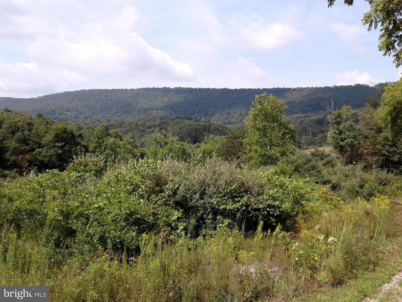 Additional photo for property listing at 1834 COLD RUN VALLEY Road 1834 COLD RUN VALLEY Road Berkeley Springs, West Virginia 25411 Estados Unidos