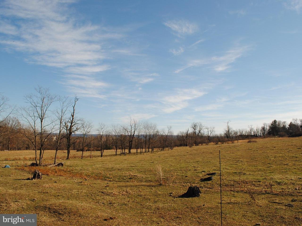 Land for Sale at 2384 FAIRVIEW Road 2384 FAIRVIEW Road Woodstock, Virginia 22664 United States