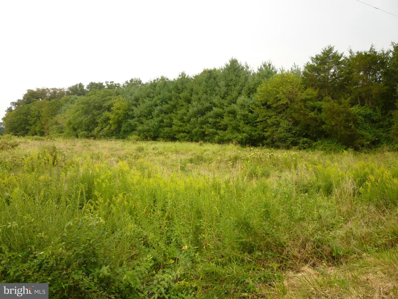Land for Sale at 0 Bristersburg Rd Catlett, Virginia 20119 United States