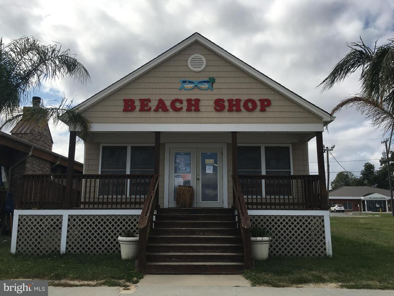 상업용 용 매매 에 209 TAYLOR Street 209 TAYLOR Street Colonial Beach, 버지니아 22443 미국