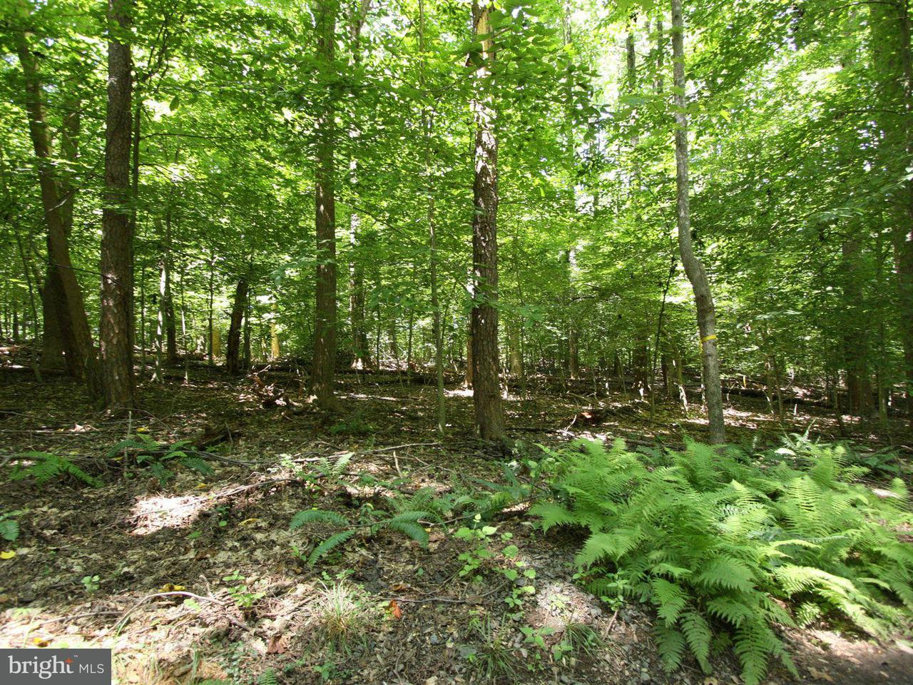Land for Sale at 11215 WEST MONTPELIER RD W 11215 WEST MONTPELIER RD W Great Falls, Virginia 22066 United States