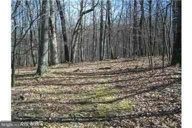 Land for Sale at 1112c Critton Owl Hollow Rd Paw Paw, West Virginia 25434 United States