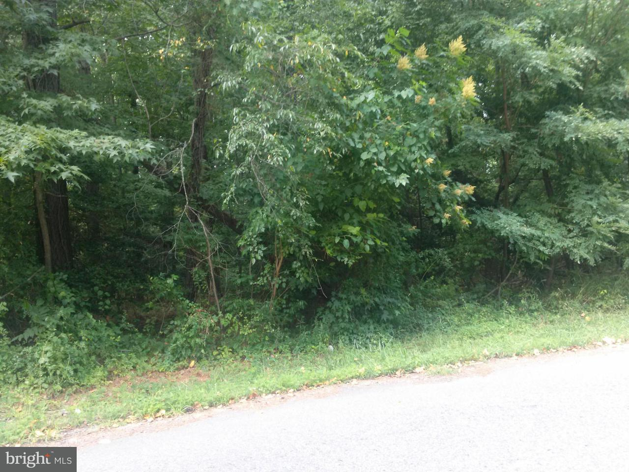 Land for Sale at 892 Crystal Rock Rd Lusby, Maryland 20657 United States