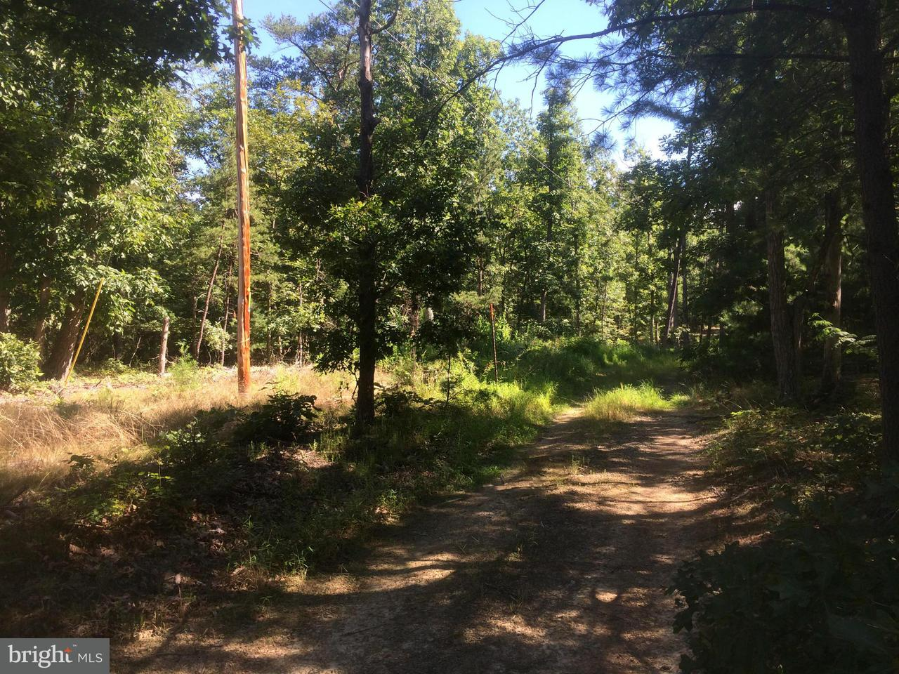 Land for Sale at Four Wheel Drive Star Tannery, Virginia 22654 United States