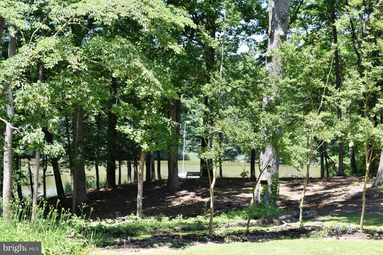 Additional photo for property listing at 9640 BANTRY Road 9640 BANTRY Road Easton, Maryland 21601 États-Unis