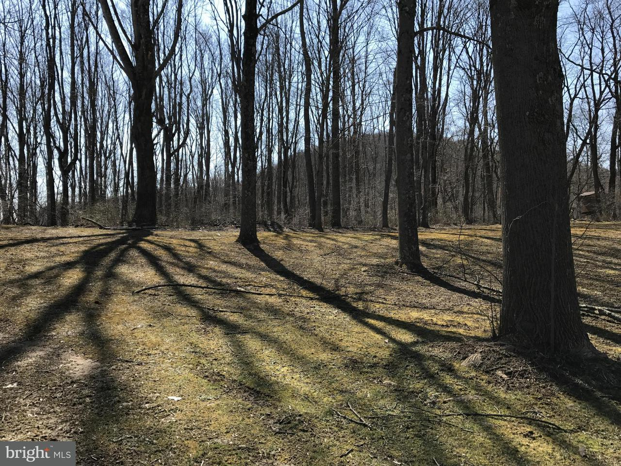 Land for Sale at Maewest Confluence, Pennsylvania 15424 United States
