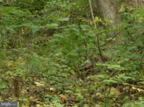 Land for Sale at High Top Linden, Virginia 22642 United States