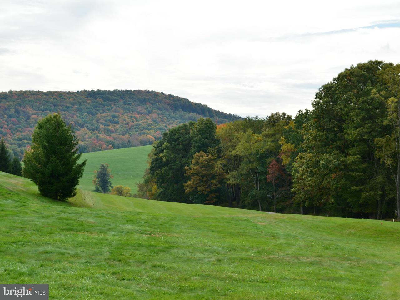 Additional photo for property listing at 136lot Eagle Ln  Terra Alta, West Virginia 26764 United States