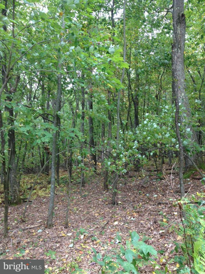 Land for Sale at New Harmony Rd. Oakland, Maryland 21550 United States