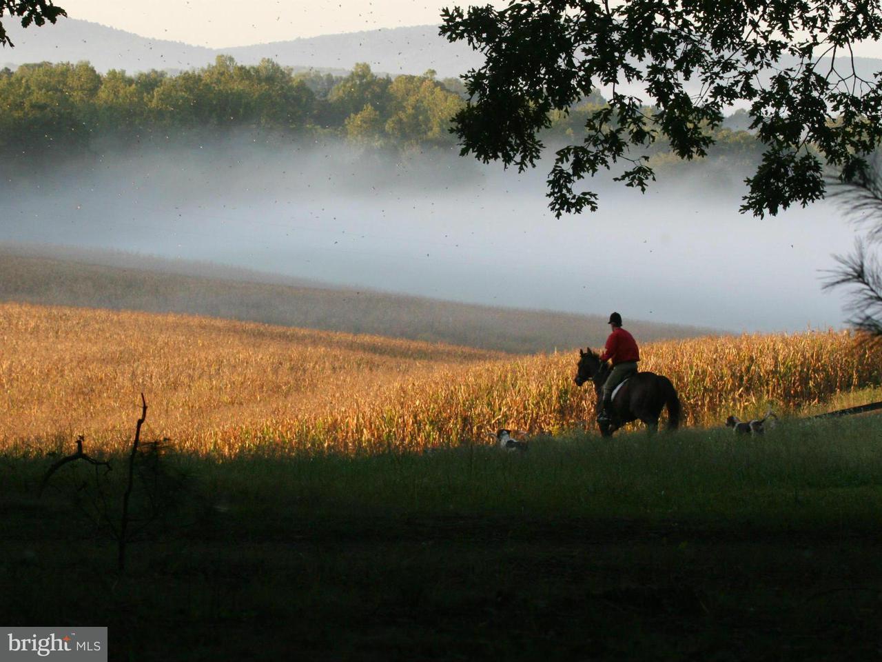 Farm for Sale at BLUE RIDGE TPKE BLUE RIDGE TPKE Rochelle, Virginia 22738 United States