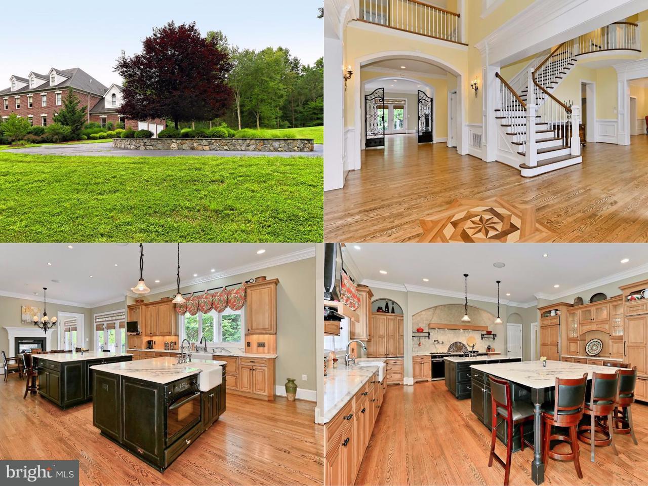 Villa per Vendita alle ore 17031 Thousand Oaks Drive 17031 Thousand Oaks Drive Haymarket, Virginia 20169 Stati Uniti