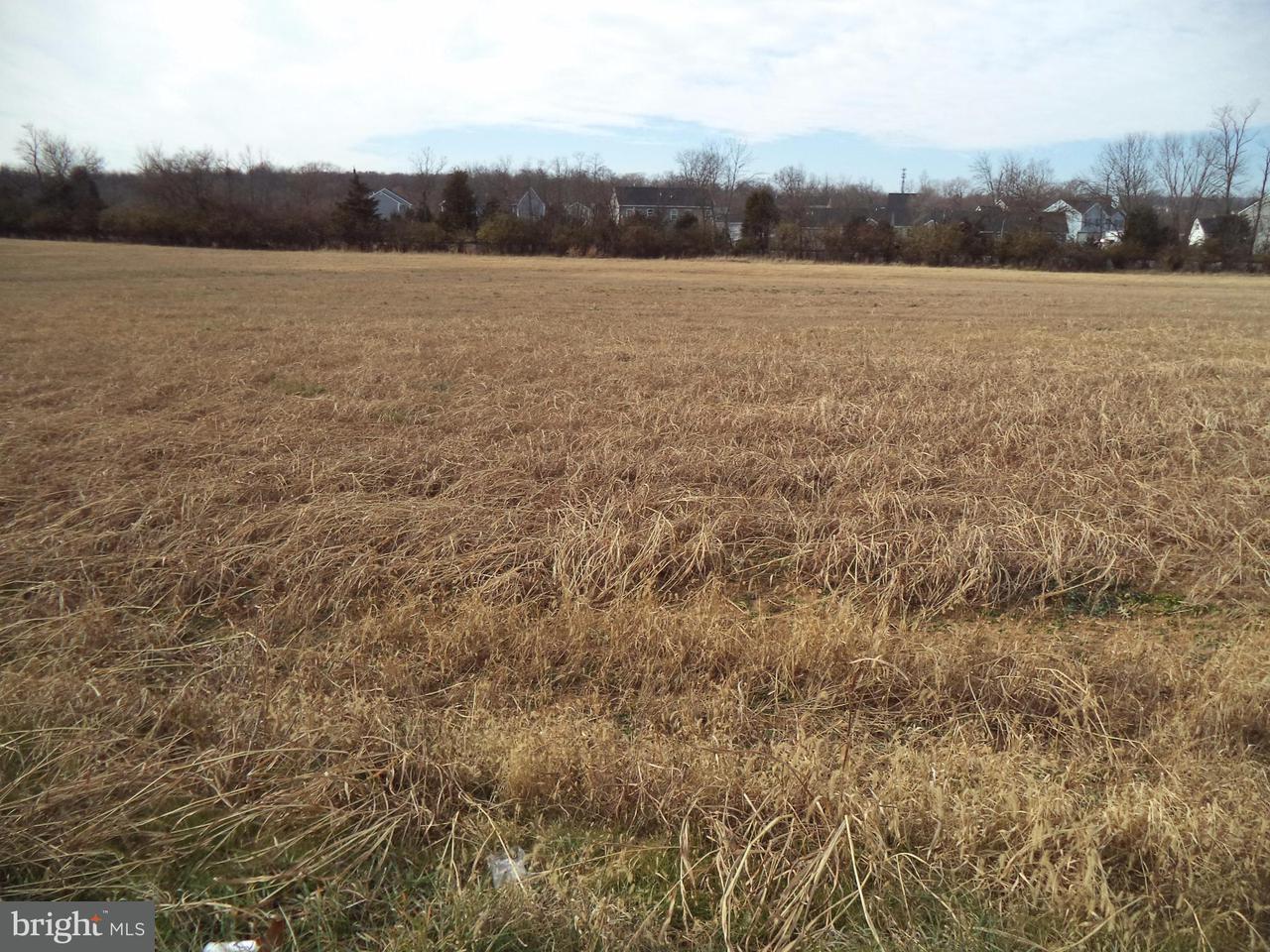 Land voor Verkoop een t WINCHESTER Avenue WINCHESTER Avenue Bunker Hill, West Virginia 25413 Verenigde Staten