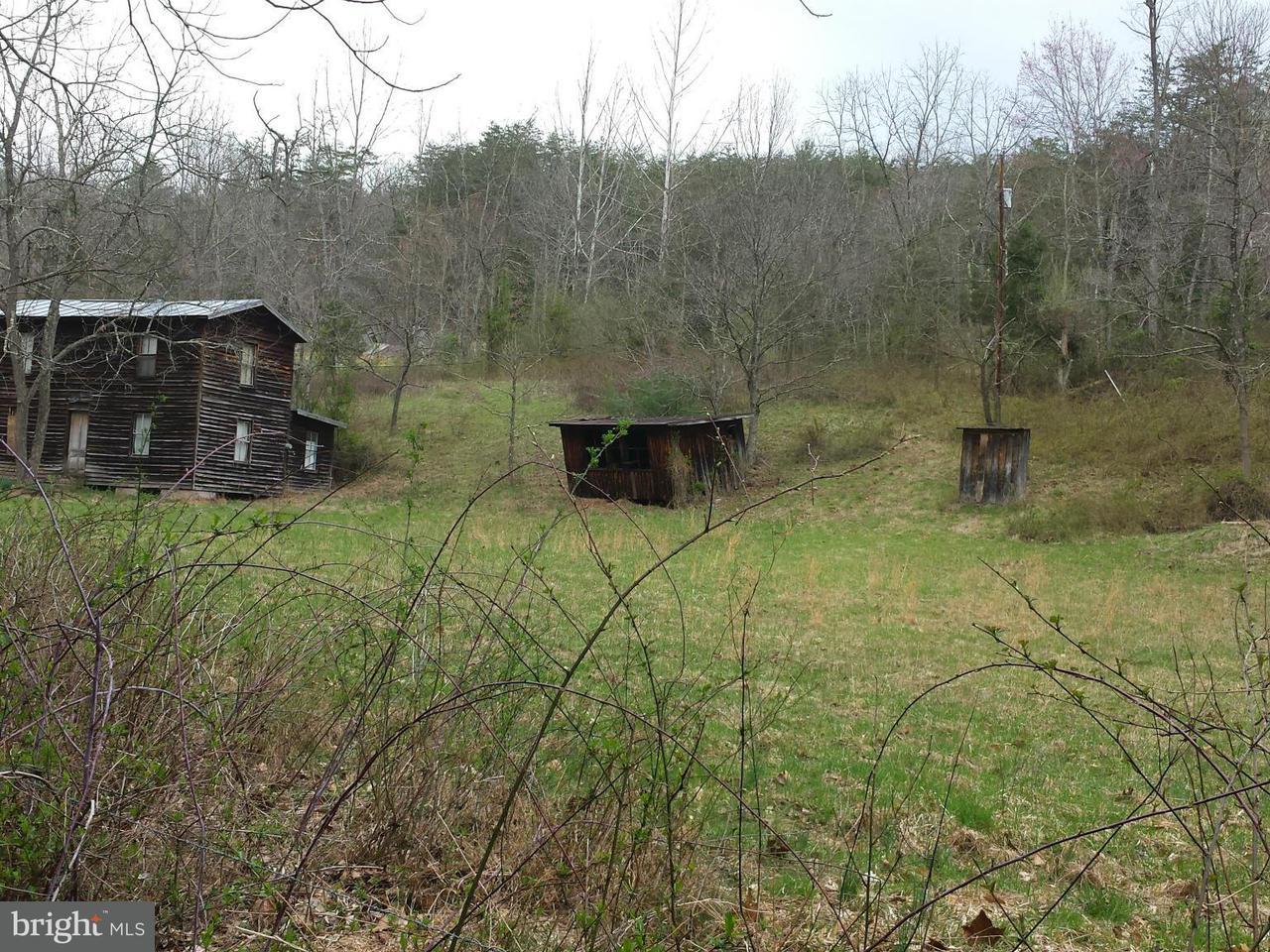土地,用地 为 销售 在 918 TUSSING Lane 918 TUSSING Lane Mount Jackson, 弗吉尼亚州 22842 美国