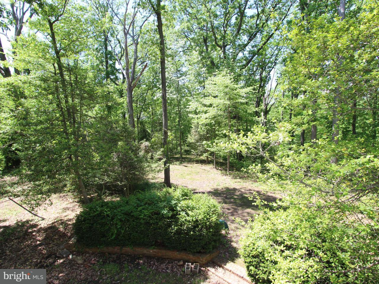 Additional photo for property listing at 1711 ST GILES Road 1711 ST GILES Road Gibson Island, Maryland 21056 United States