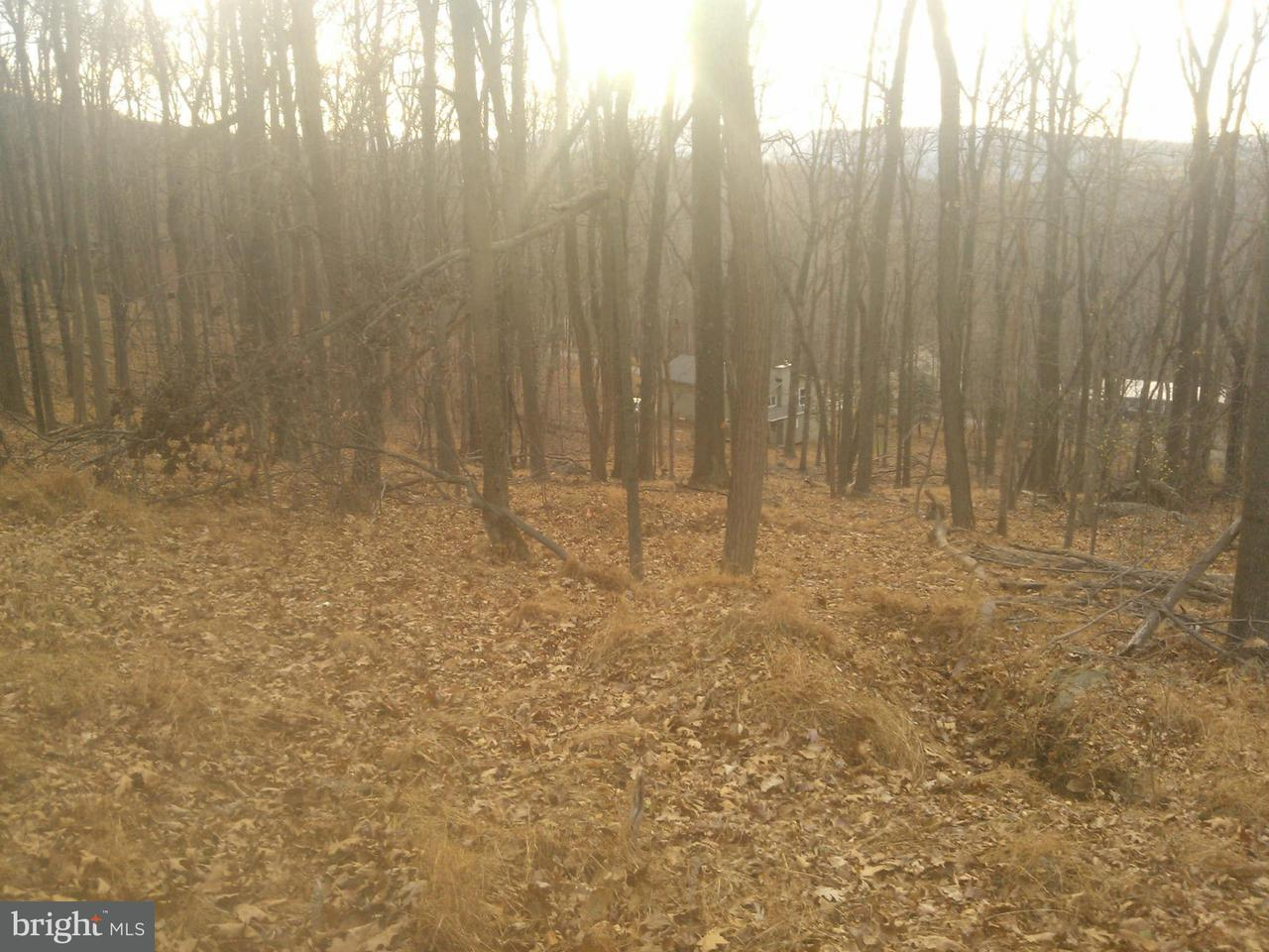 Additional photo for property listing at Club House Rd  Front Royal, Virginia 22630 United States