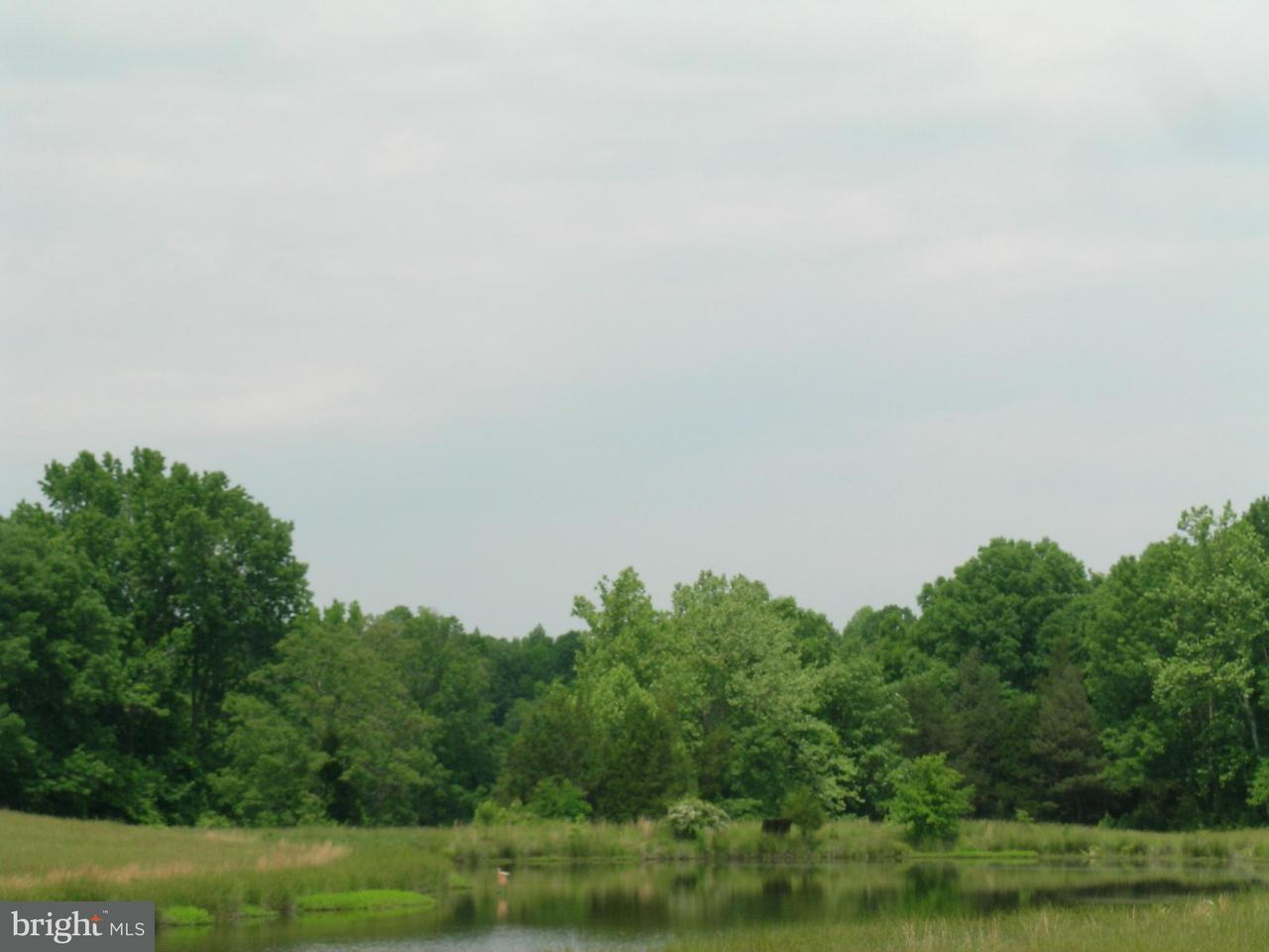 Additional photo for property listing at 1 Aeolian  Bumpass, Virginia 23024 United States