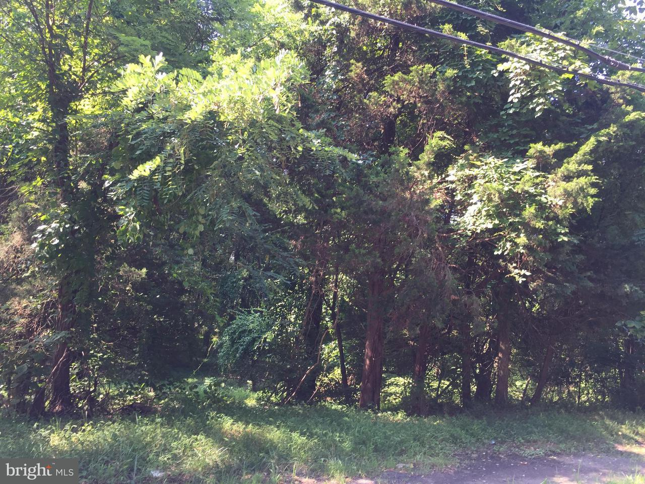 Additional photo for property listing at 748 KENTLAND Drive 748 KENTLAND Drive Great Falls, Virginia 22066 United States