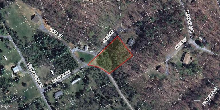 Land for Sale at 400 Colburn Dr Rileyville, Virginia 22650 United States