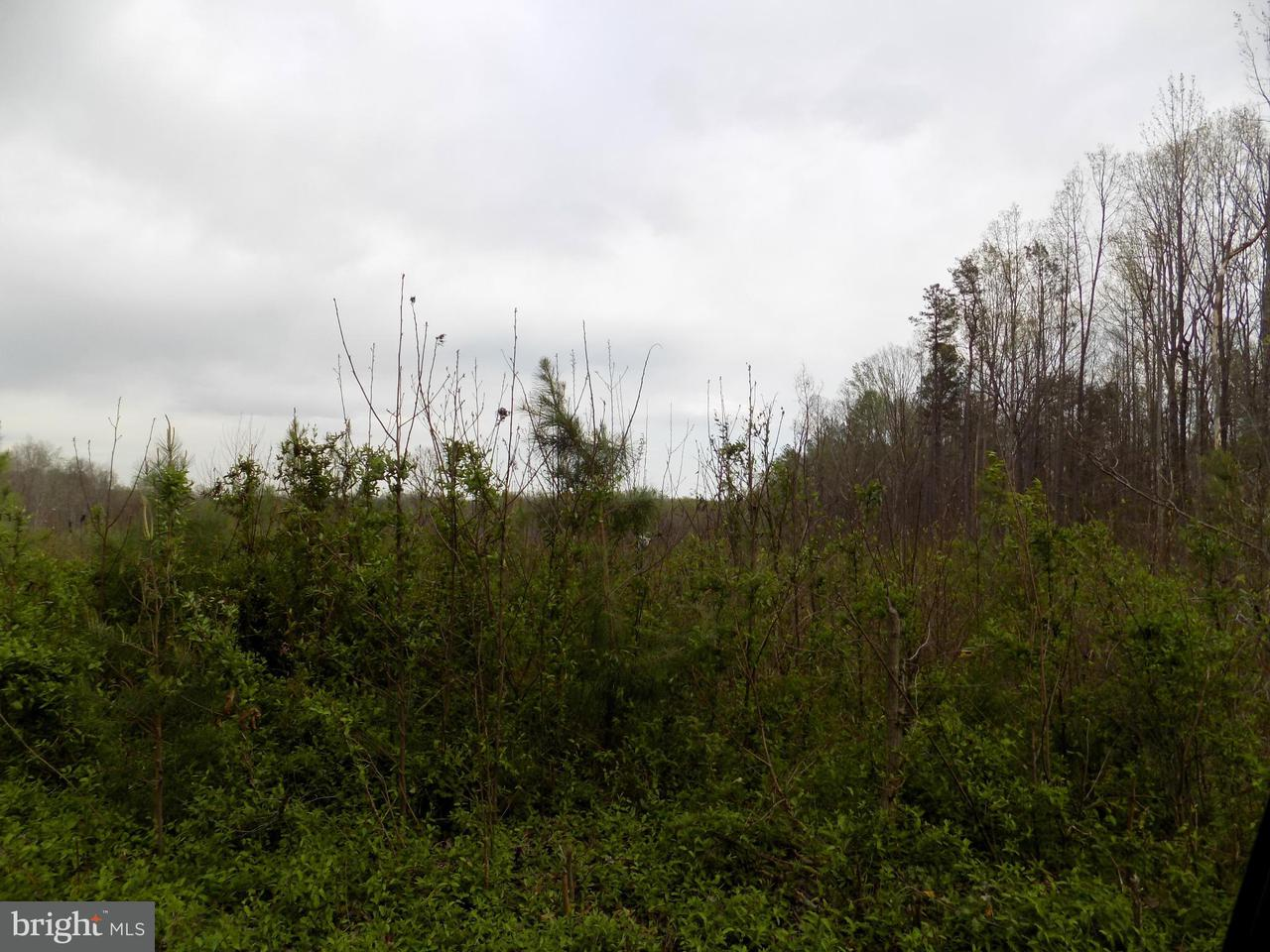 Land for Sale at Country Rd - Lot 2 Beaverdam, Virginia 23015 United States