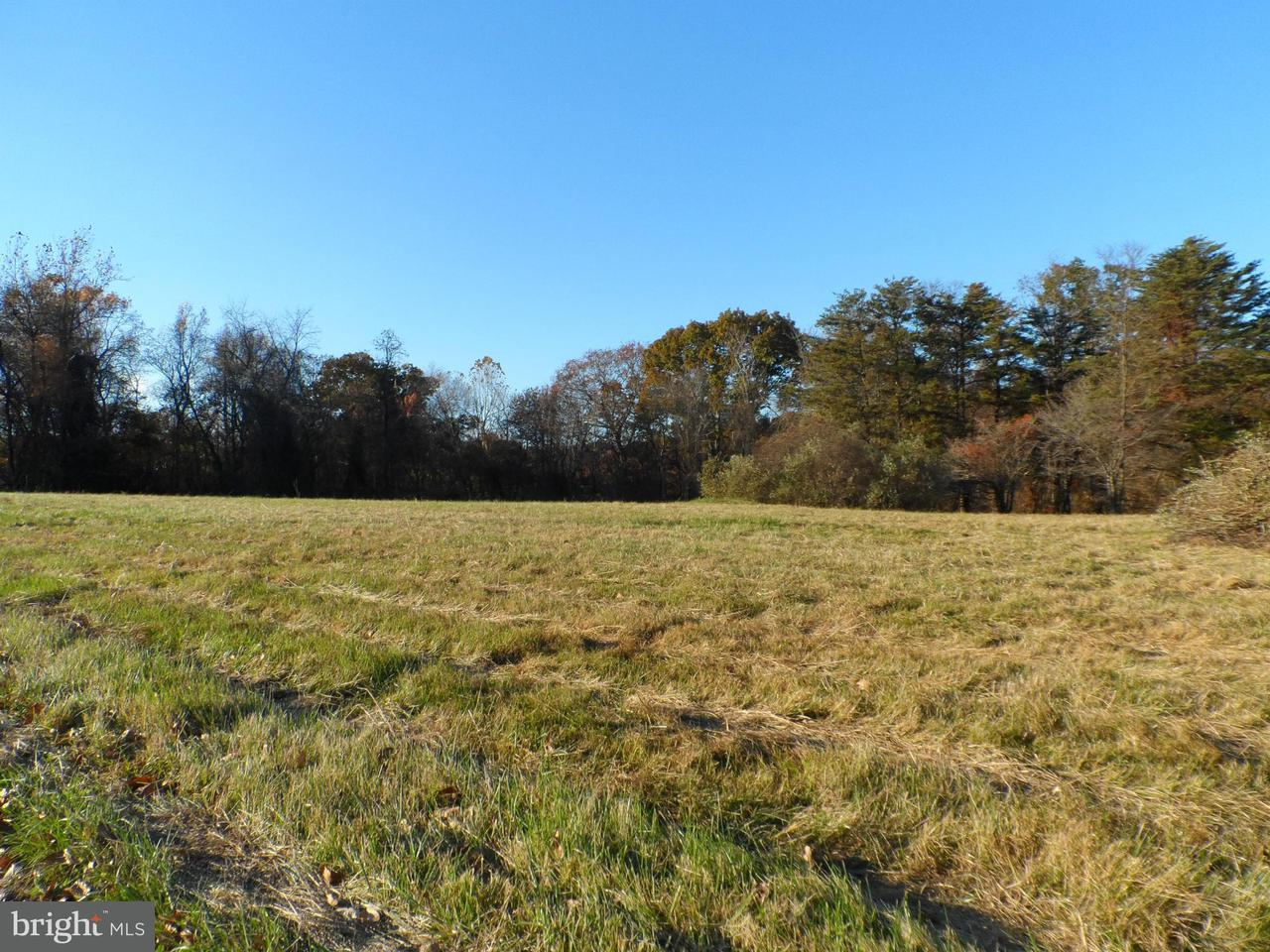 Additional photo for property listing at Carefree Ln  Boyce, Virginia 22620 United States