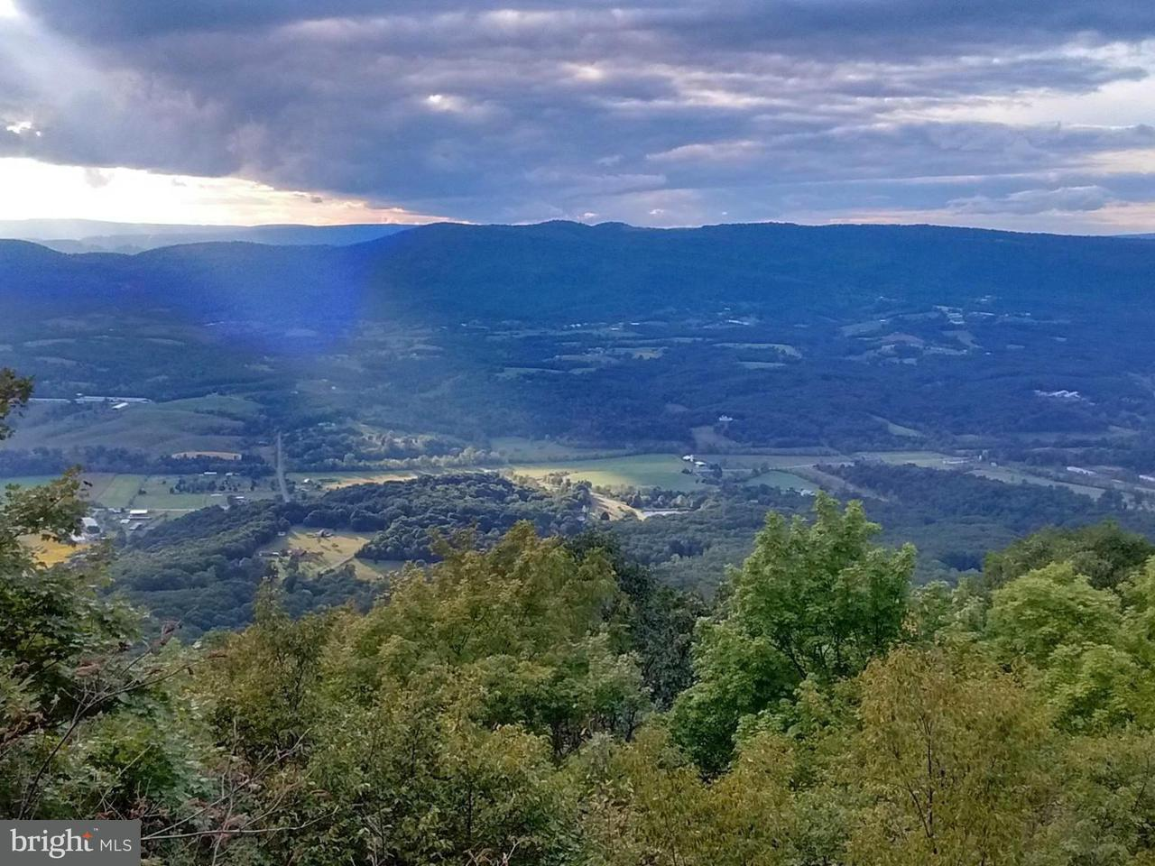 Land for Sale at Lot 8, Sec. 2 High Knob Old Fields, West Virginia 26845 United States