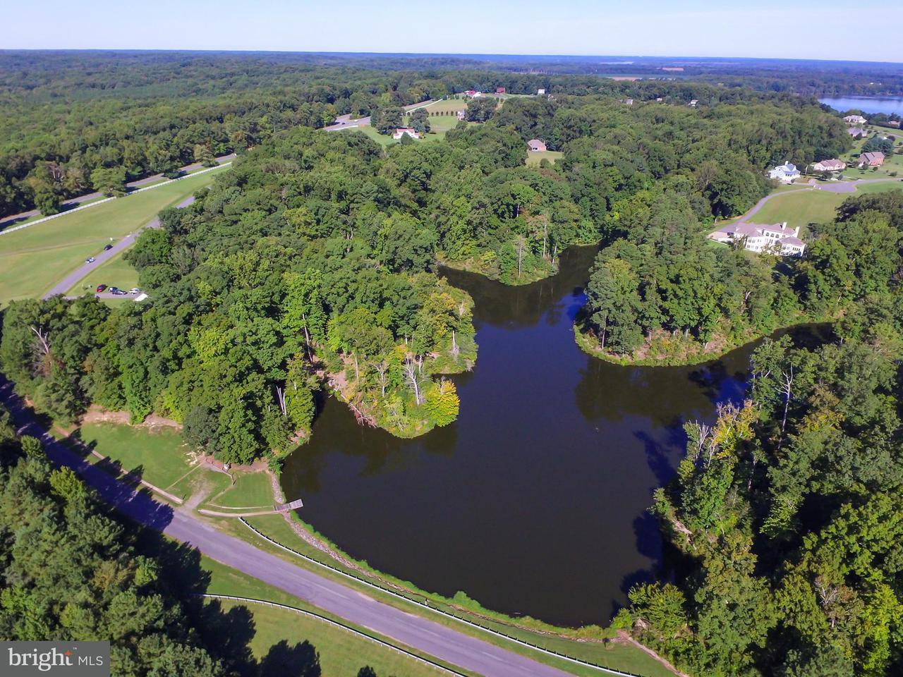 Land for Sale at Lot 81 - Portobago Trl Port Royal, Virginia 22535 United States