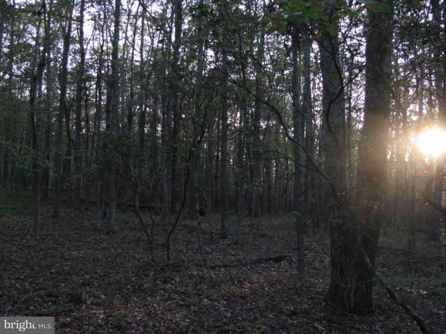 Additional photo for property listing at Spring Mt Prop Sec A  Cabins, West Virginia 26855 United States