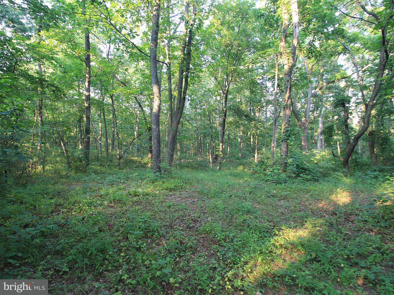 Land for Sale at Lot Carpenter Ln Newburg, Pennsylvania 17240 United States