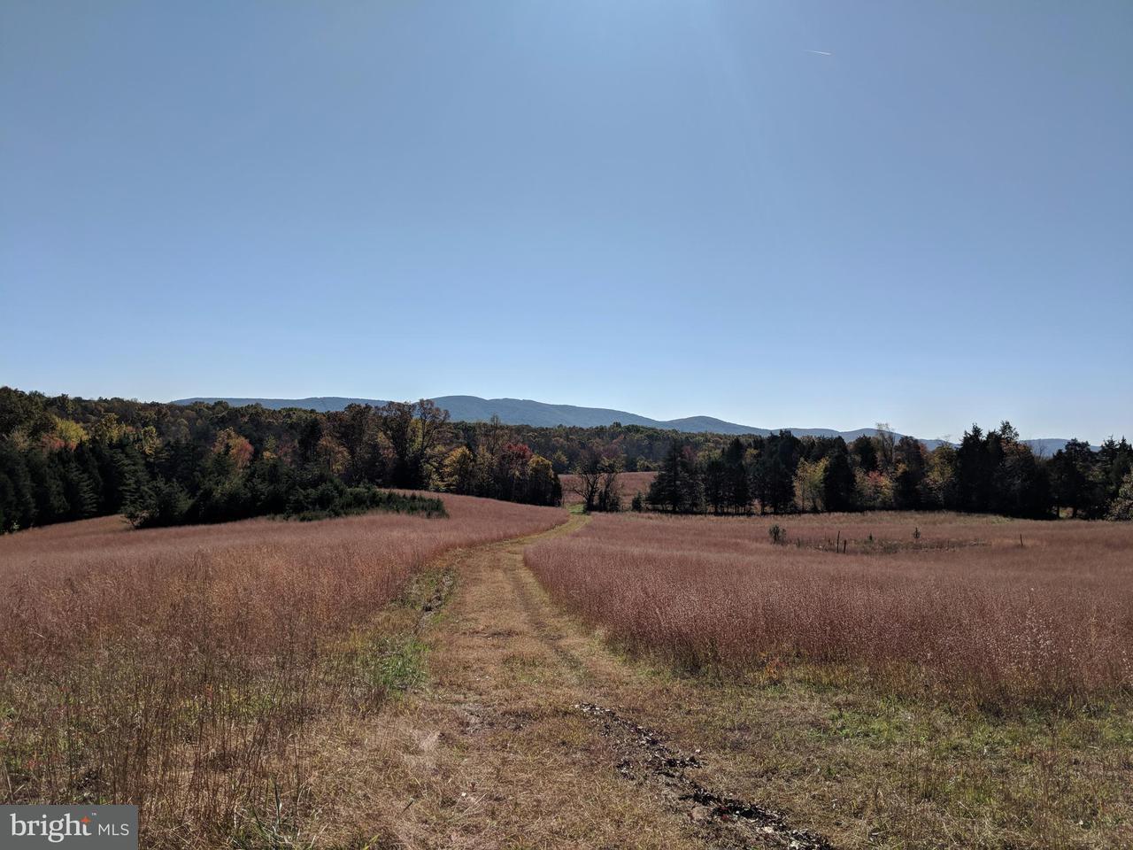 Terrain pour l Vente à BURNLEY Road BURNLEY Road Barboursville, Virginia 22923 États-Unis